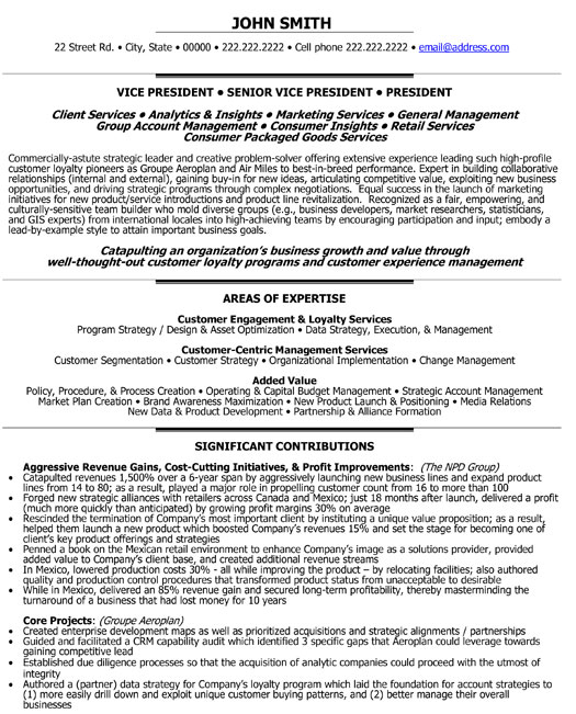 senior vice president loyalty resume template premium