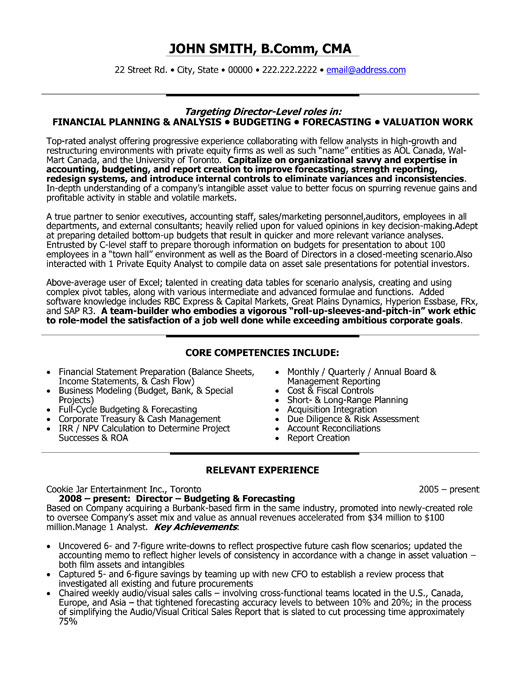 Director of Finance Resume Template | Premium Resume Samples & Example