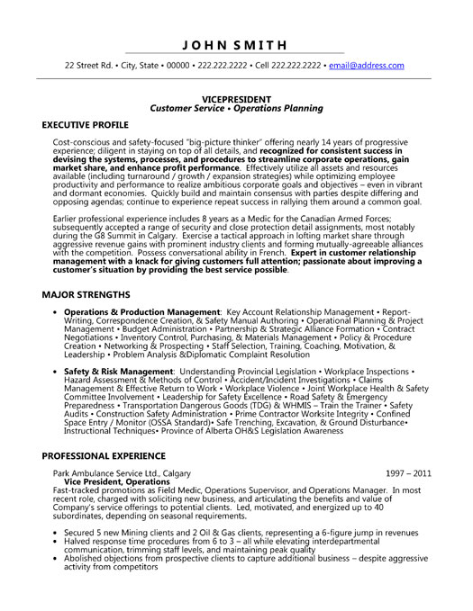 Vice President Resume Template | Premium Resume Samples & Example