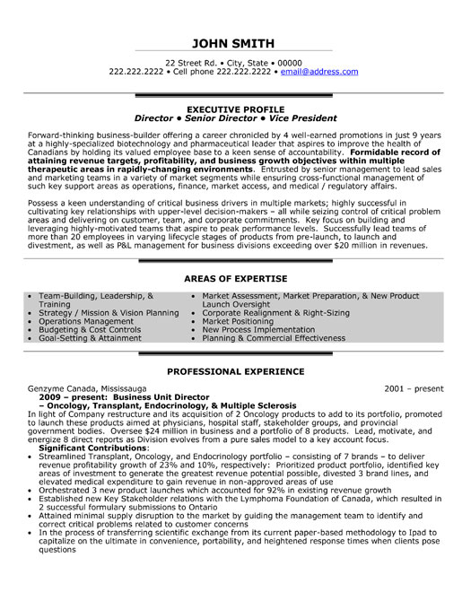 downloads executive director resume template resumes free