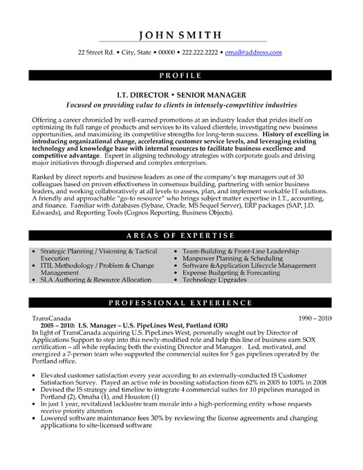 It Director Or Senior Manager Resume Template Premium