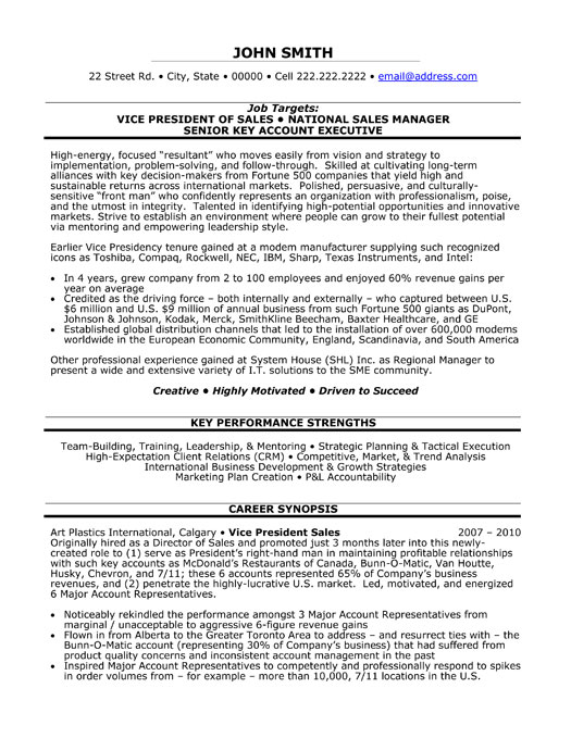 vice president of sales resume template