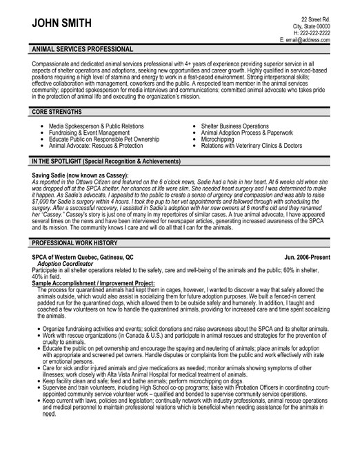 Property Tax Consultant Cover Letter