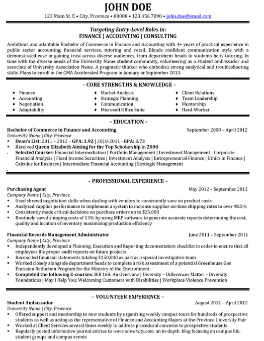 Financial Consultant Resume Sample