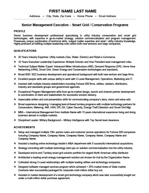 Vice President Or Senior Manager Resume