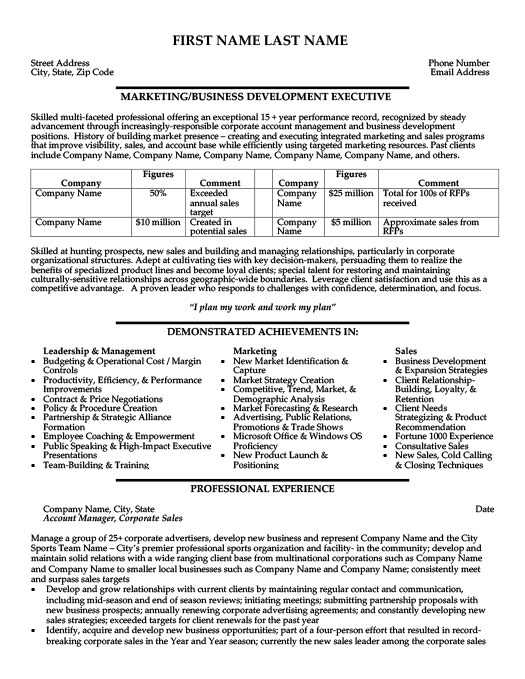 Business Development Executive Resume Template  Premium Resume