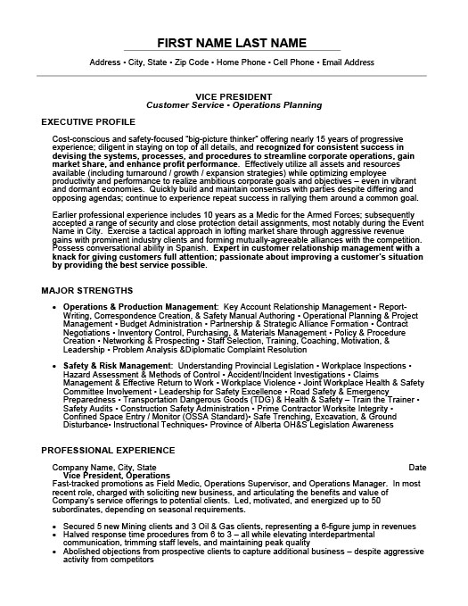 vice president resume template