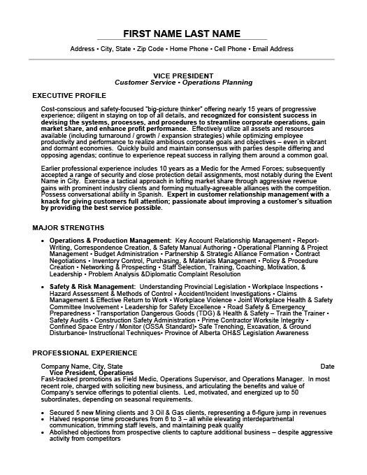 vice president resume template premium resume samples