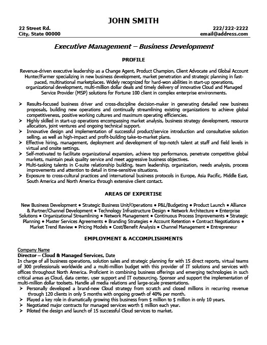 executive director resume - It Management Resume Examples