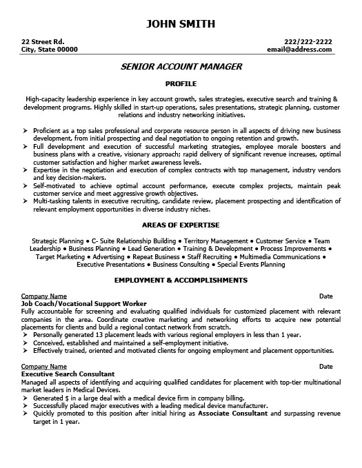 senior account executive resume - Account Executive Resume Sample