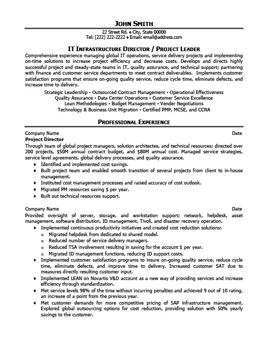 project director resume template
