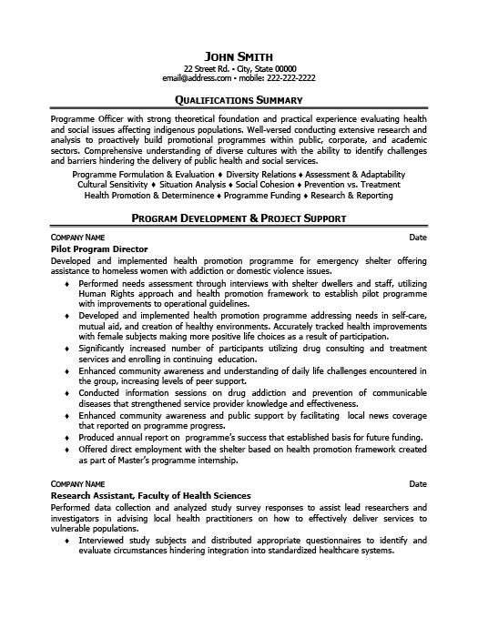 pilot program director resume template premium resume