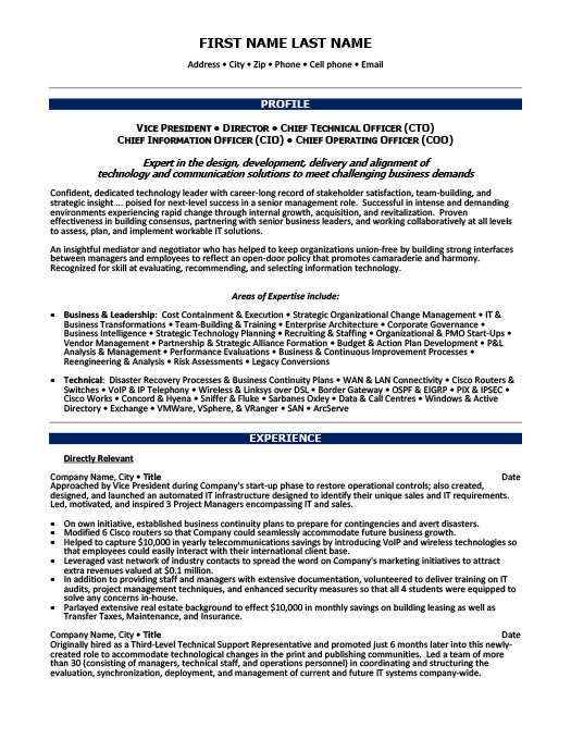 vice president of finance resume template